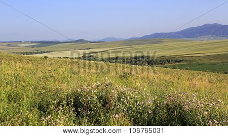 Agricultural fields in the hills of Altai Mountains.