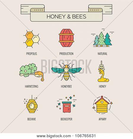 Honey Symbols
