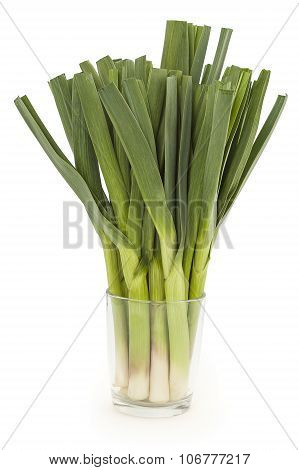 Young green garlic