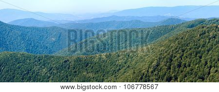 Summer Hazy Mountain Forest Panorama