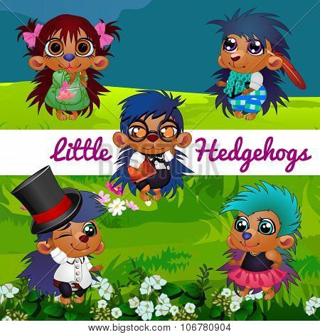 Small hedgehogs in a human manner in the meadow