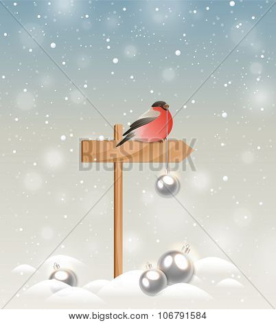 Bullfinch And Christmas Decorations