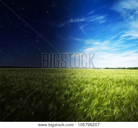Green field in day and night.