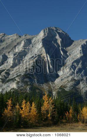 Mt Kidd, Autumn