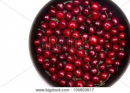 Red cherries in round baking tin, isolated on white background with copy-space for your text