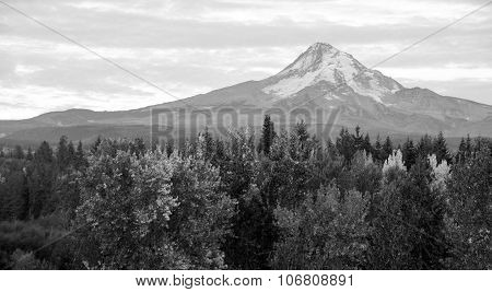 Mt. Hood Volcanic Mountain Cascade Range Oregon Territory