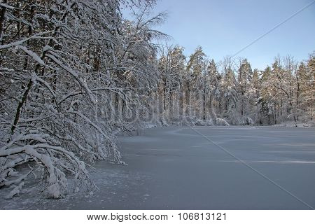 Winter Peyzazh.bereg Icy River. Trees Branches Bent Under The Weight Of Snow