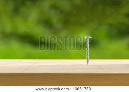 Screw Screwed Into Wooden Plank