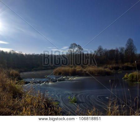 forest river, Leningrad region, Russia