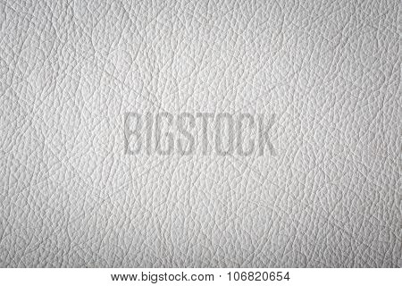 White Leather Surface