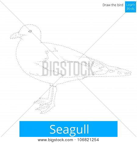 Seagull bird learn to draw vector