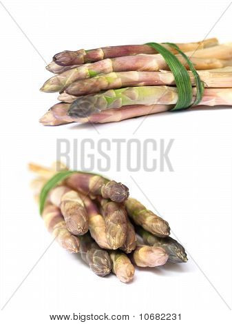 Collection Of Fresh White Asparagus Isolated On White Background