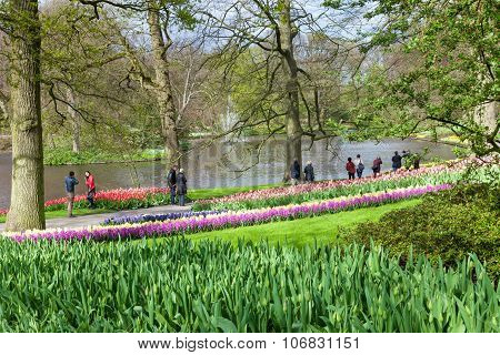 View of Keukenhof Flower Garden, Netherlands