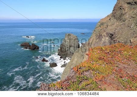 Point Bonita, California