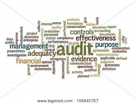 Word Cloud Of Audit And Its Related Words