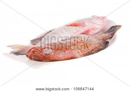 fresh uncooked raw bass fish prepared for cook