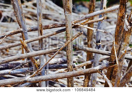 Cross-hatched Bamboo