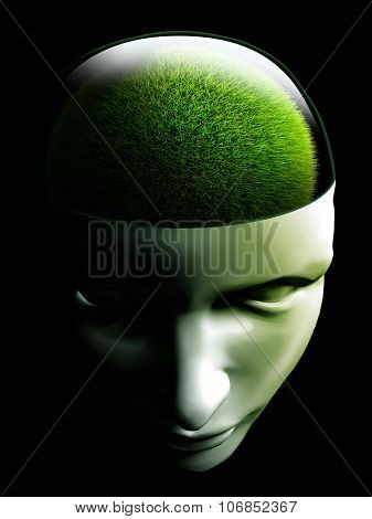 Grass Brain In Human Head