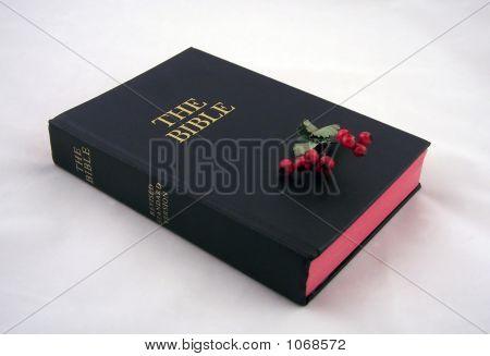 Urlaub-Bibel