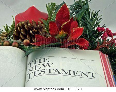 Bíblia de férias