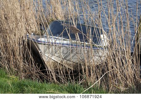 Sunken Recreational Boat