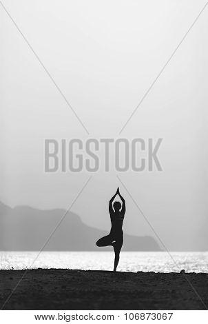 Woman Meditating In Yoga Vrksasana Pose Silhouette