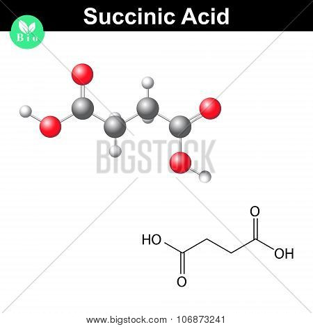 Succinic Acid Molecule