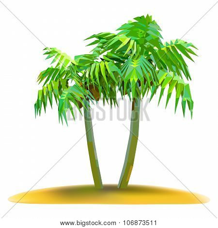 Coconut Palm Trees On Small Island