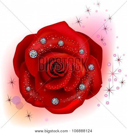 Red macro rose with diamonds