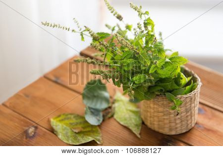 botany, summer, gardening and herbs concept - close up of fresh melissa in wicker basket and leaves on wooden table