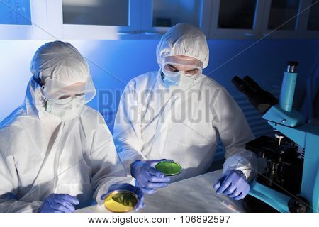 science, chemistry and people concept - close up of scientists with chemical samples in petri dish making test or research at laboratory