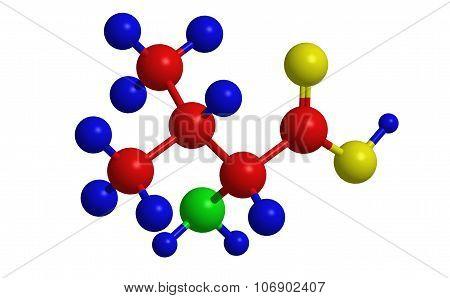 Molecular Structure Of Valine