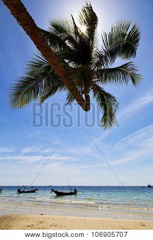 Sun Ligt Asia  The  Kho     Rocks  Boat   Thailand    Sea Anchor