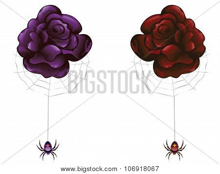 Rose And Spider