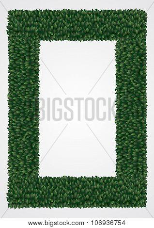 Frame Of Green Leaves 1