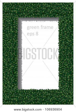 Frame Of Green Leaves 2