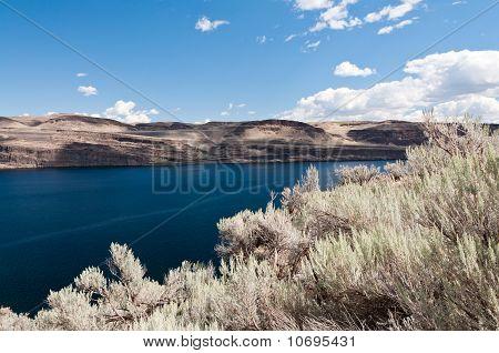 Sagebrush And Basalt Hills Along Columbia River