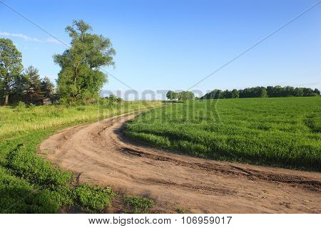 Summer Farm Road Along The Field