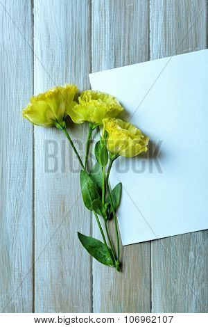 Composition of white sheet and yellow  blossom on grey wooden background, empty space