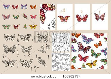 Set with different butterflies. For your design, announcements, postcards, posters.
