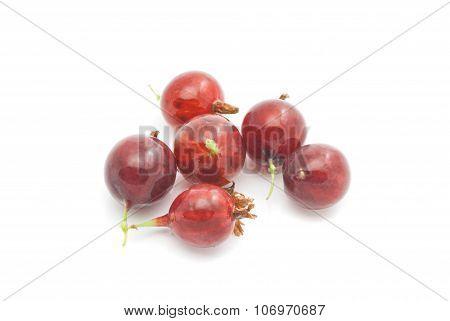 Gooseberries On White