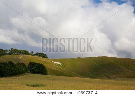 Mystic White Horse On The Hill Near Avebury.