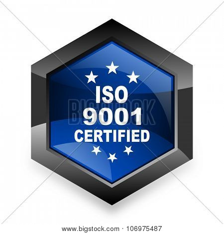 iso 9001 blue hexagon 3d modern design icon on white background