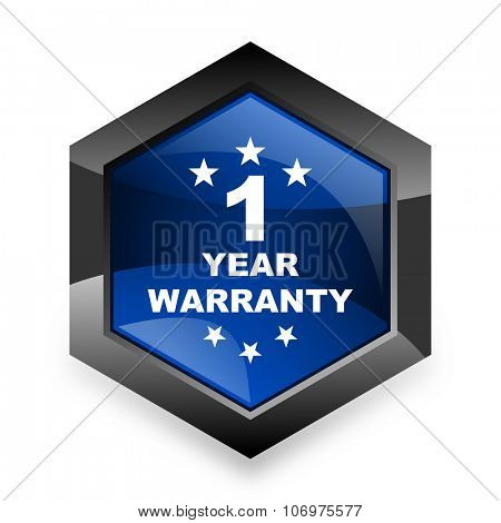 warranty guarantee 1 year blue hexagon 3d modern design icon on white background