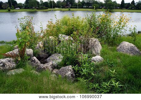 Large Stones by a Small Lake
