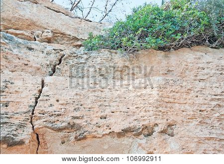 Limestone rock with cracks