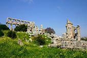 pic of euphrat  - ruins of historic simonis abbey in syria - JPG