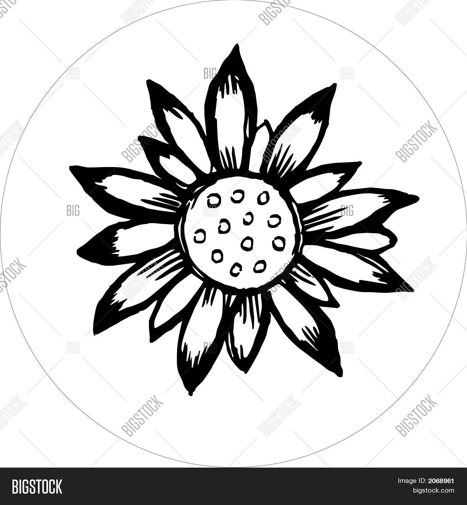 Uncategorized How To Draw Big Flowers flower draw black white eps vector photo bigstock and eps