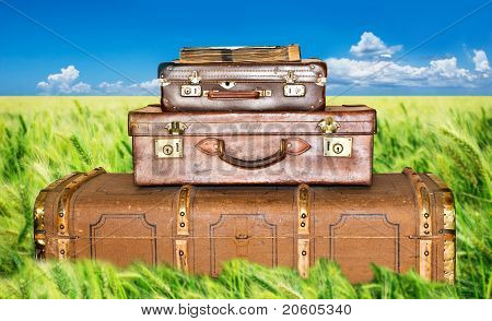 Green Wheat Field With Three Old Leather Suitcases