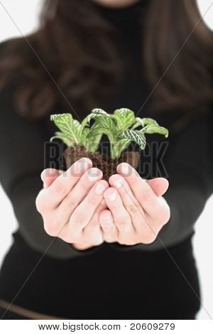 Closeup of a young woman holding plant in her hand